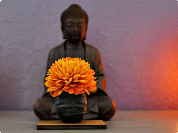 studio_buddha